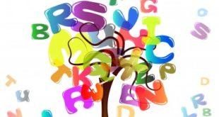 کارنامه اولیه کنکور زبان 99