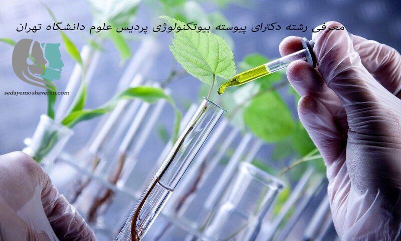 معرفی رشته دکترای پیوسته بیوتکنولوژی پردیس علوم دانشگاه تهران